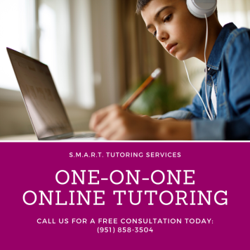 One-on-One Online Tutoring